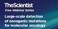 image: Large-Scale Detection of Oncogenic Mutations for Molecular Oncology