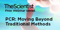 image: PCR: Moving Beyond Traditional Methods