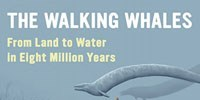 image: Book Excerpt from <em>The Walking Whales</em>