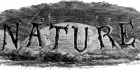 image: <em>Nature</em> Opens the Archives