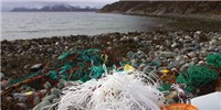 image: An Ocean of Plastic