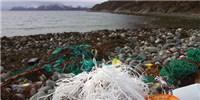 image: An Ocean of Plastic