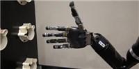 image: Brain-Machine Interface Goes Wireless