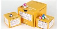 image: Promega PowerPlex® Fusion 6C System