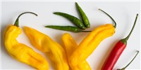 image: How Hot Peppers Can Ease Pain