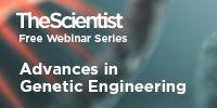 image: Advances in Genetic Engineering