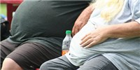 image: Sewage Bacteria Linked to Obesity