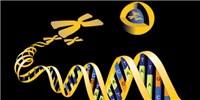 image: 23andMe Enters Drug Development
