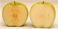 image: FDA Deems GM Apples, Potatoes Safe
