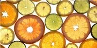 image: Citrus History