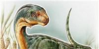 image: <em>T. rex</em>'s Vegetarian Cousin