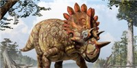 image: Spiky-Headed Dino Discovered