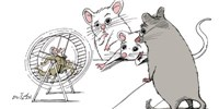 image: When Does a Smart Mouse Become Human?