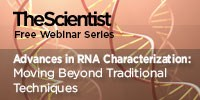 image: Advances in RNA Characterization: Moving Beyond Traditional Techniques
