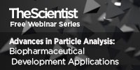 image: Advances in Particle Analysis: Biopharmaceutical Development Applications