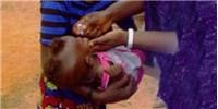 image: Updating the Polio Vaccine