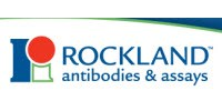 image: Rockland Immunochemicals, Inc. Introduces Melanoma Cell Lines