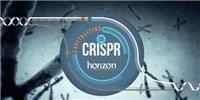 image: Horizon Discovery: Capitalizing on CRISPR