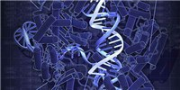 image: CRISPRi-Controlled Gene Expression