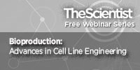 image: Bioproduction: Advances in Cell Line Engineering