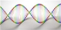 image: Study: Genetic Tests Don't Change Behavior