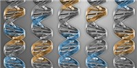 image: Minimal Genome Created