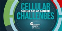 image: Cellular Challenges: Taking Aim at Cancer