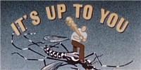 image: Mosquito Control, 1945