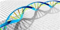 image: Genetic Resilience