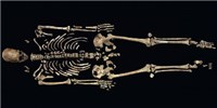 image: US Government to Repatriate Kennewick Man