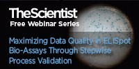 image: Not All Spots are Created Equal: Maximizing Data Quality in ELISpot Bio-Assays Through Stepwise Process Validation