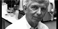 image: Renowned Cancer Theorist Dies
