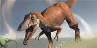image: Another Dinosaur with Short Arms Discovered