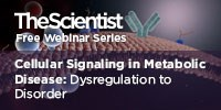 image: Cellular Signaling in Metabolic Disease – Dysregulation to Disorder