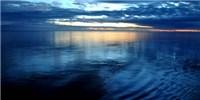 image: Ocean Viruses Cataloged