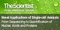image: Novel Applications of Single-cell Analysis: From Sequencing to Quantification of Nucleic Acids and Proteins