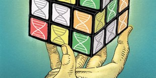 The Pangenome: Are Single Reference Genomes Dead?