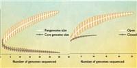 image: Infographic: Partitioning the Genome