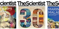 image: <em>The Scientist</em>'s Year in Review
