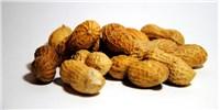 image: NIH: Allergen-Exposure Strategy Can Prevent Peanut Allergy
