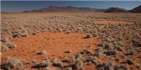 image: Another Explanation for Africa's Enigmatic Fairy Circles