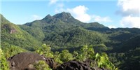 image: Restoring a Native Island Habitat