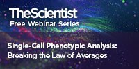image: Single-Cell Phenotypic Analysis: Breaking the Law of Averages