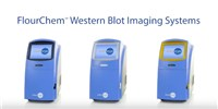 image: ProteinSimple: FluorChem Western Blot Imaging Systems