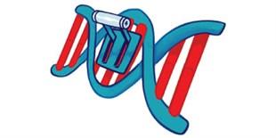 A Selection of CRISPR Proof-of-Principle Studies