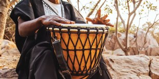 Understanding the Roots of Human Musicality