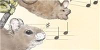 image: Song Around the Animal Kingdom