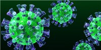 image: Experimental MERS Treatments Target Host Cell Receptor