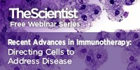 image: Recent Advances in Immunotherapy: Directing Cells to Address Disease