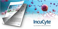 image: Real-Time Live-Cell Analysis for Immunologists